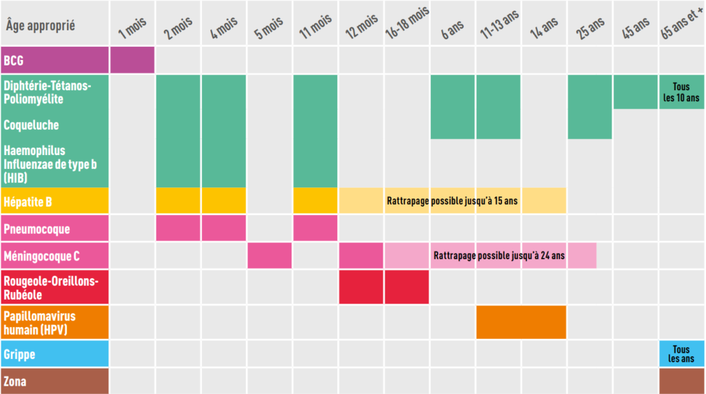 calendrier-vaccins