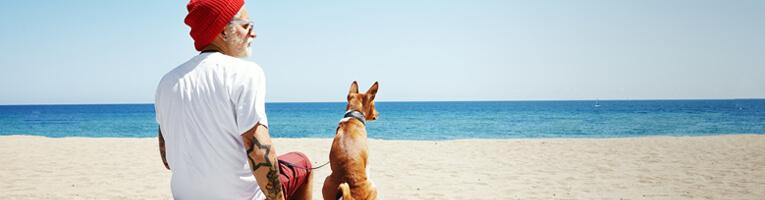 Amour des hommes et des chiens